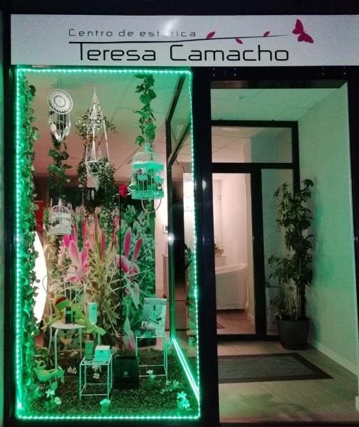 TERESA CAMACHO QUESADA
